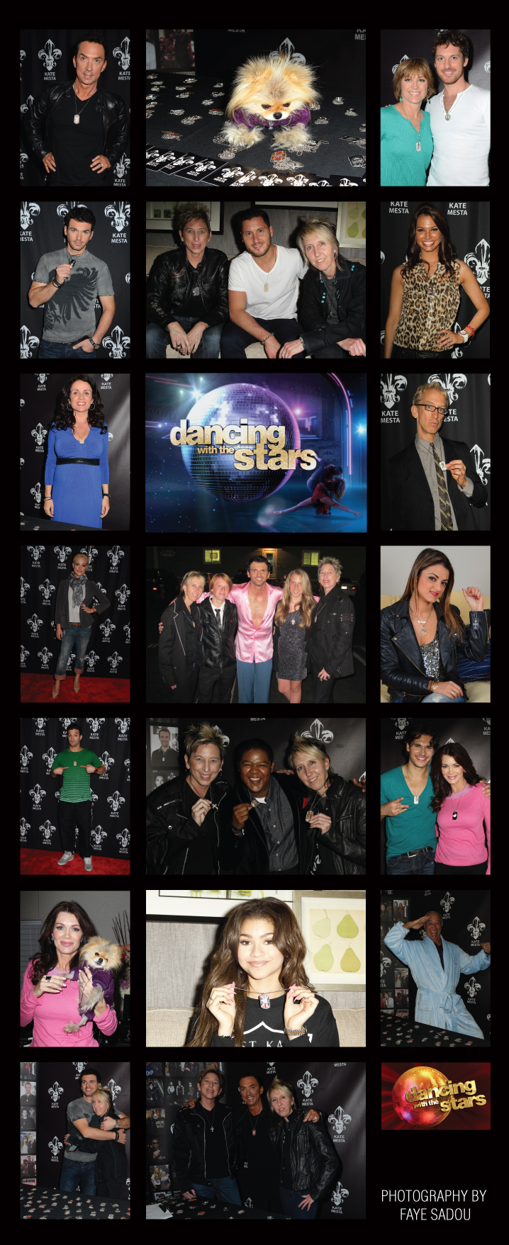 Banner Dancing with the Stars